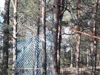 Siatka bezpieczeństwa zawieszona między drzewami